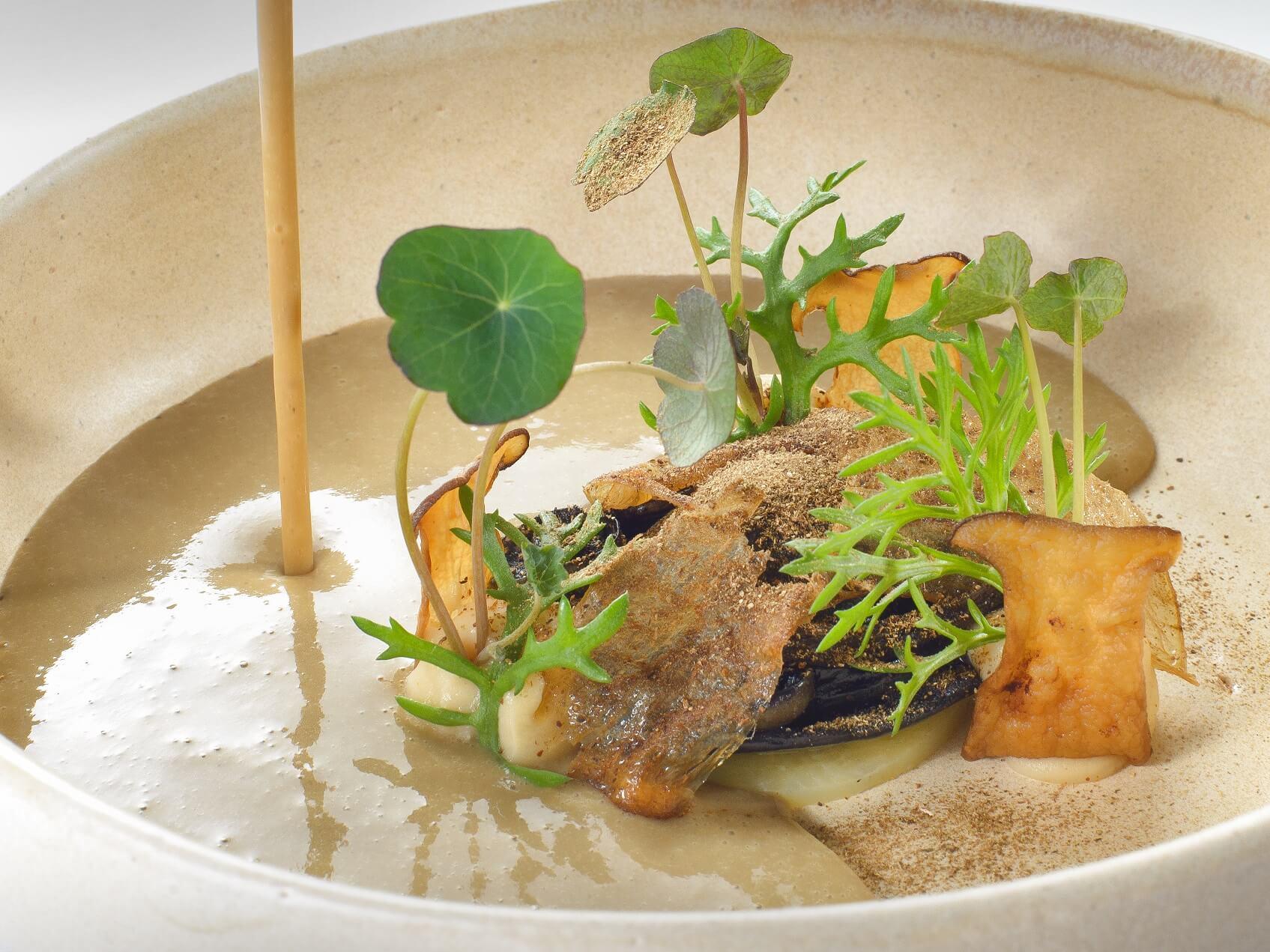 zupa z borowików2 - Od borowika do kurki. Jesień to czas grzybobrania