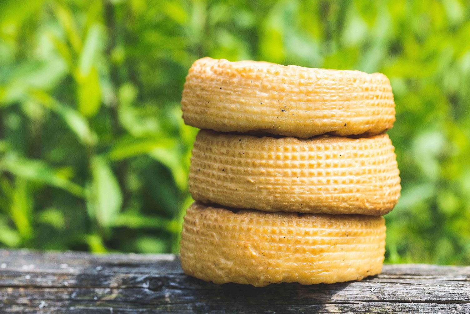 Kaszubska koza 2 1 - Pomorze pełne tradycyjnych smaków