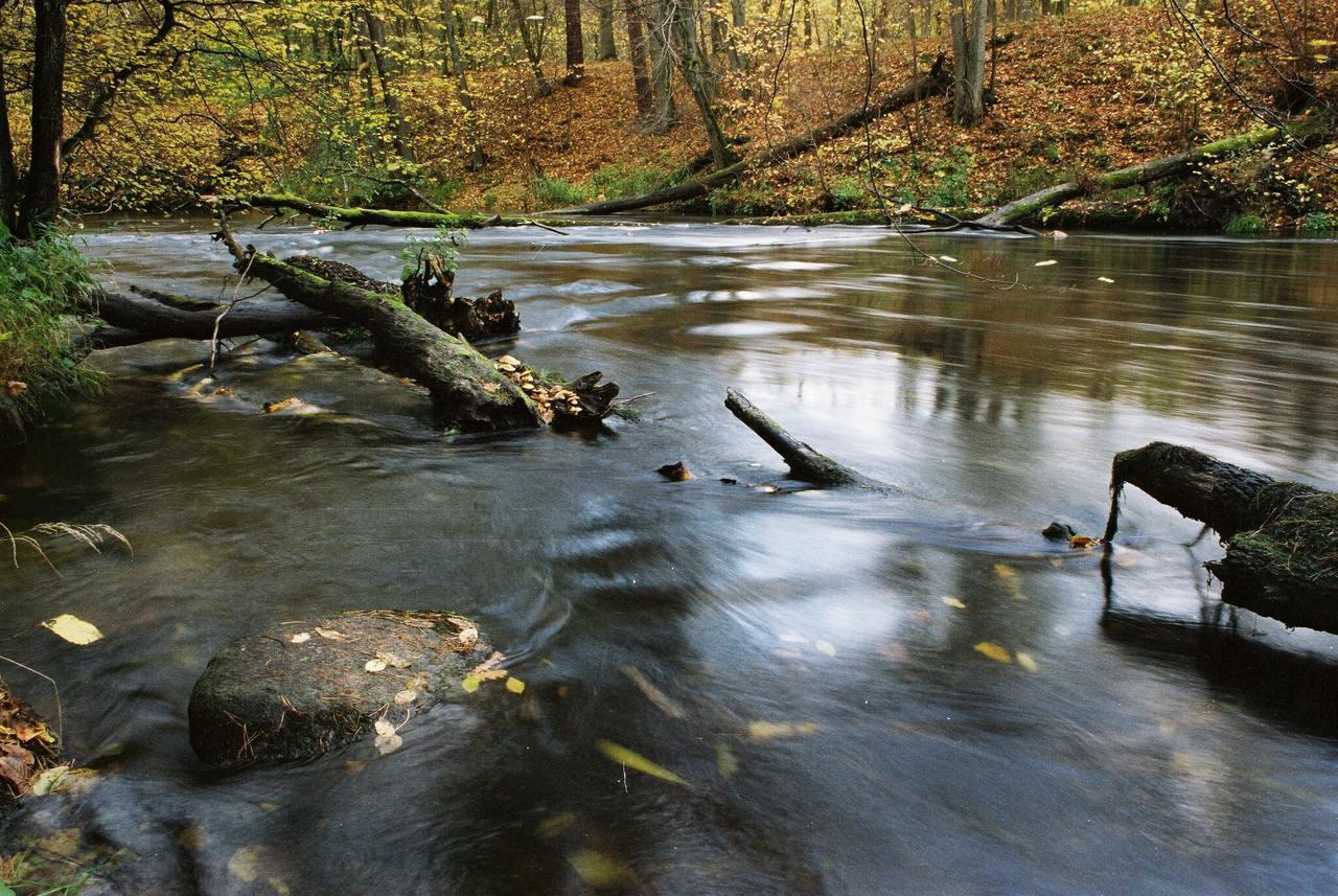 Pomorska majówka w Tucholskim Parku Krajobrazowym