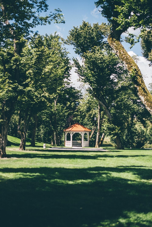 Lesny Dwor 11 - Uczta w Leśnym Dworze w Sulęczynie