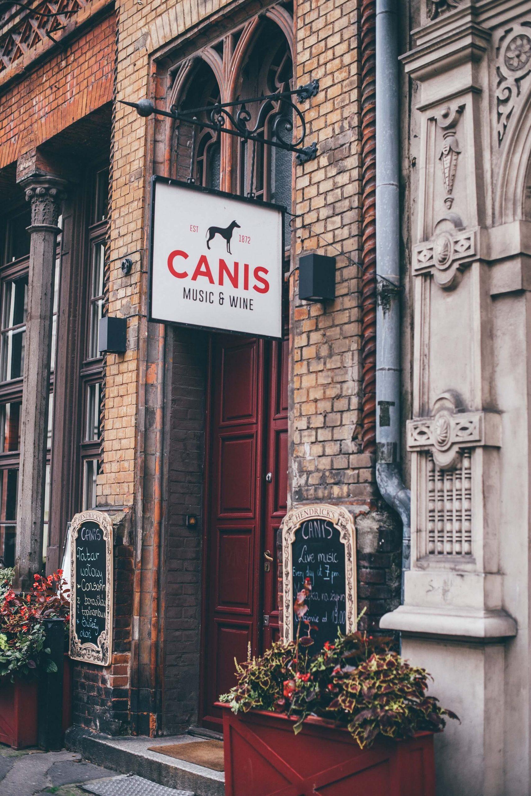 Canis 20 scaled - Canis: dbałość o szczegół
