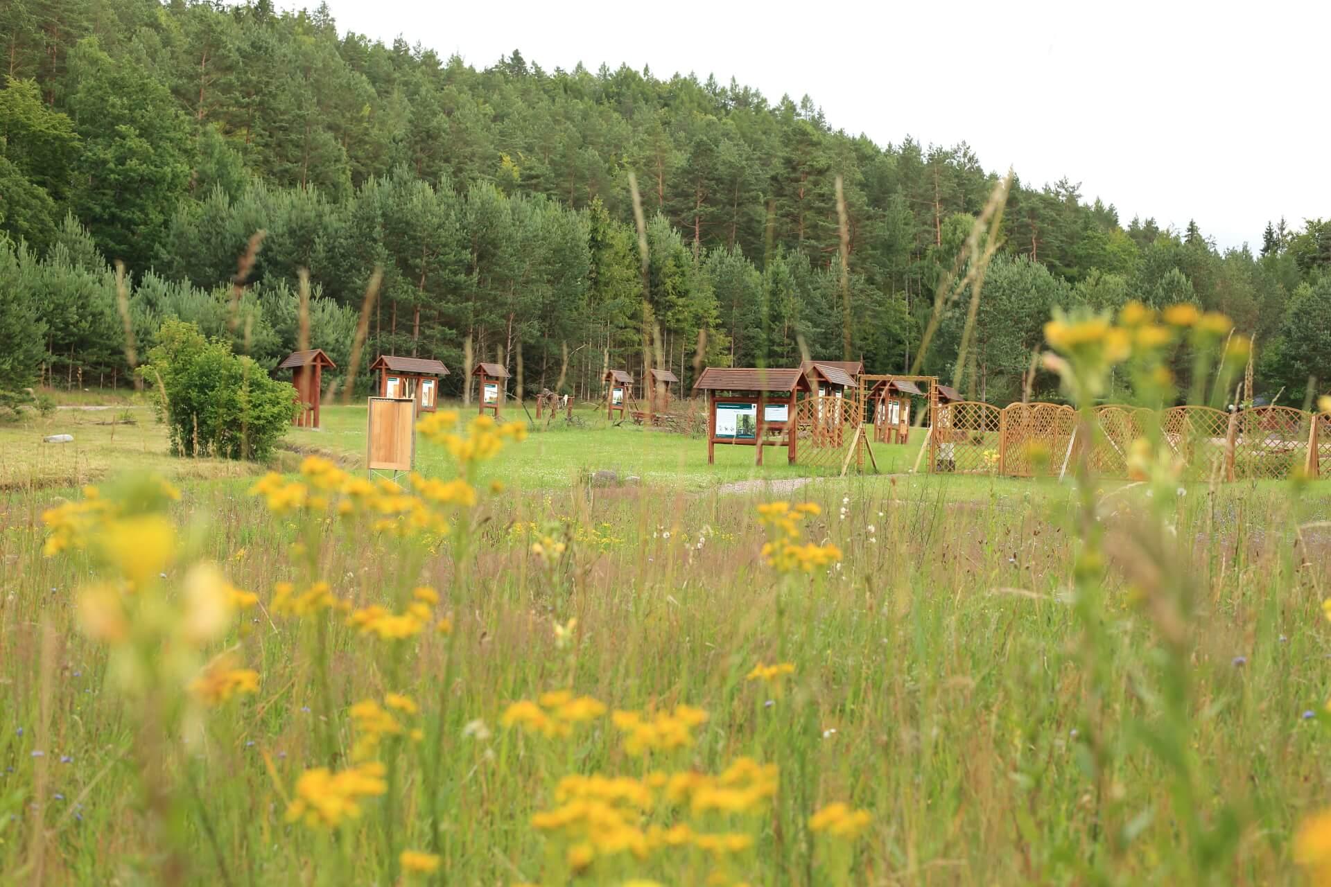 Marszewo sciezki przyrodnicze 2 nature trail - Nature trails in Pomorskie: take a stroll and learn something new