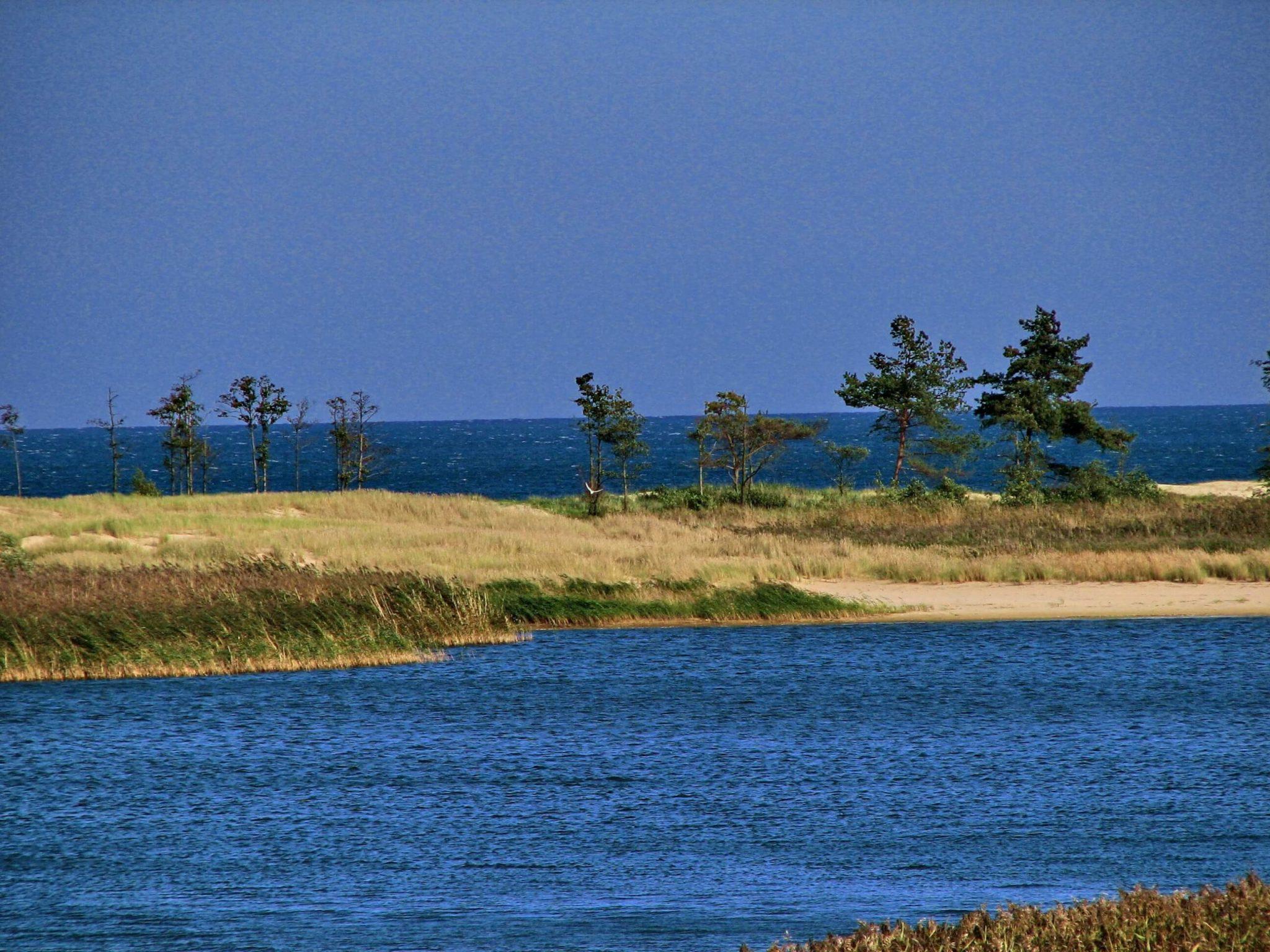 Rezerwat Ptasi Raj sciezki przyrodnicze scaled - Pomorskie ścieżki przyrodnicze - spacer z edukacją dla dzieci i dorosłych