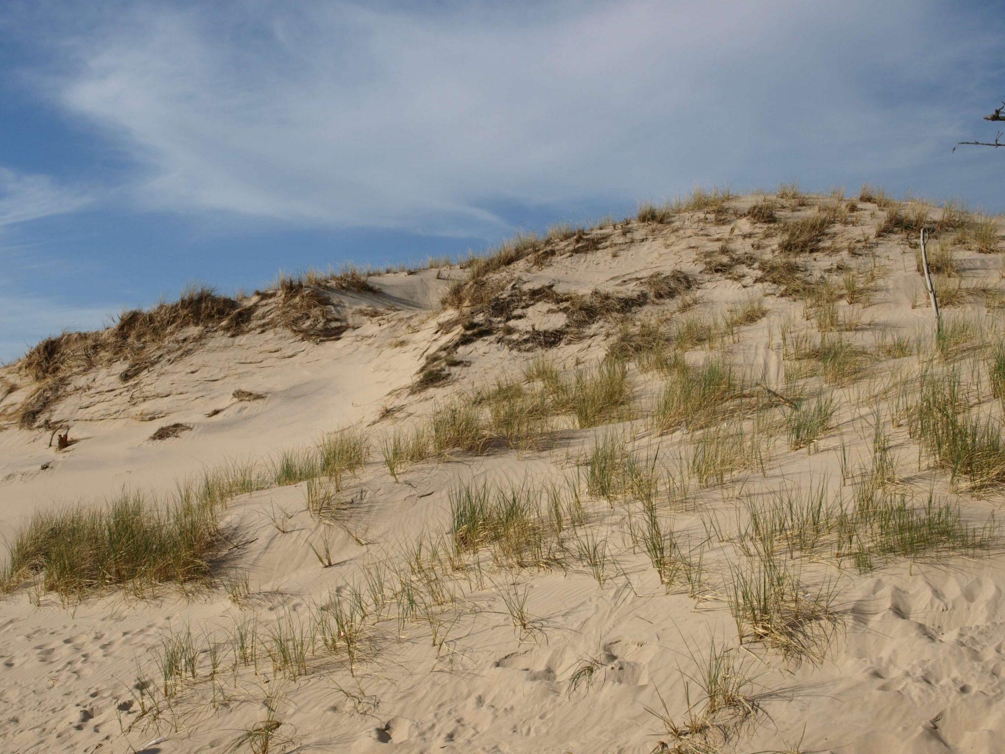 szlaki turystyczne SPN 4 scaled - Masz ochotę na spacer? Wybierz jeden z pomorskich szlaków turystycznych