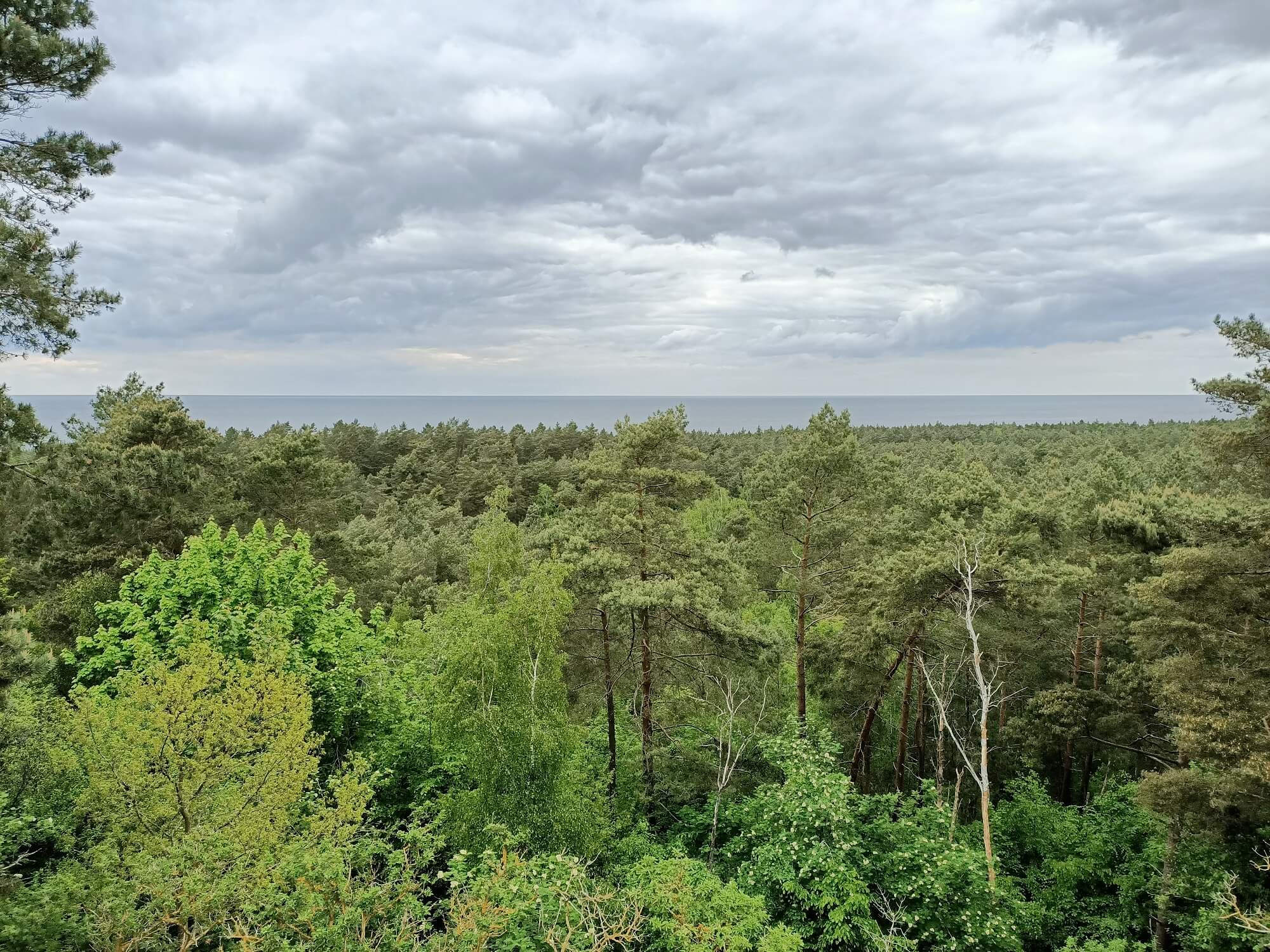 The Vistula Spit 3 - The Vistula Spit — a beautiful far reach of Poland