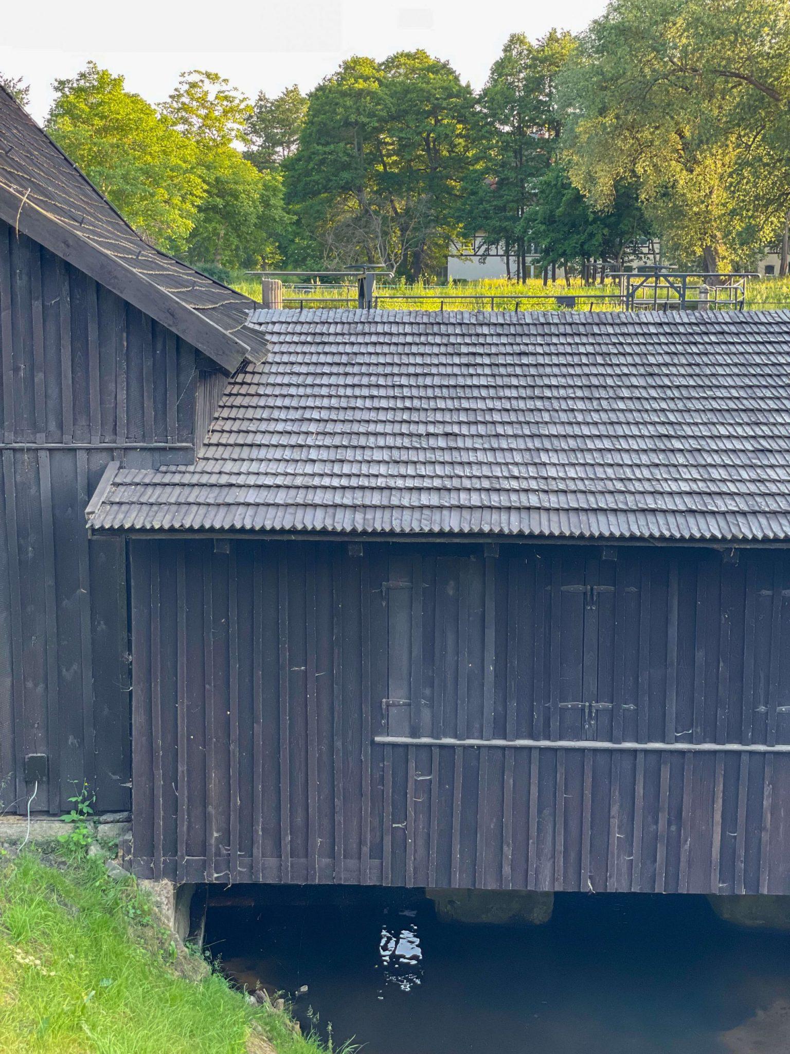 Oliwa 19 scaled - Oliwskie Doliny, spacer wśród zabytków i natury