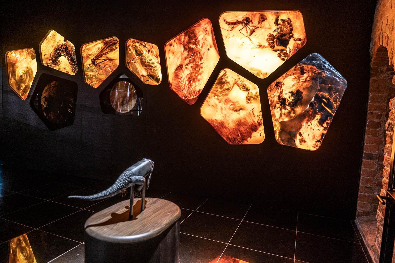 DSC 3479 - Magiczny świat bursztynu. Nowa siedziba muzeum w Wielkim Młynie