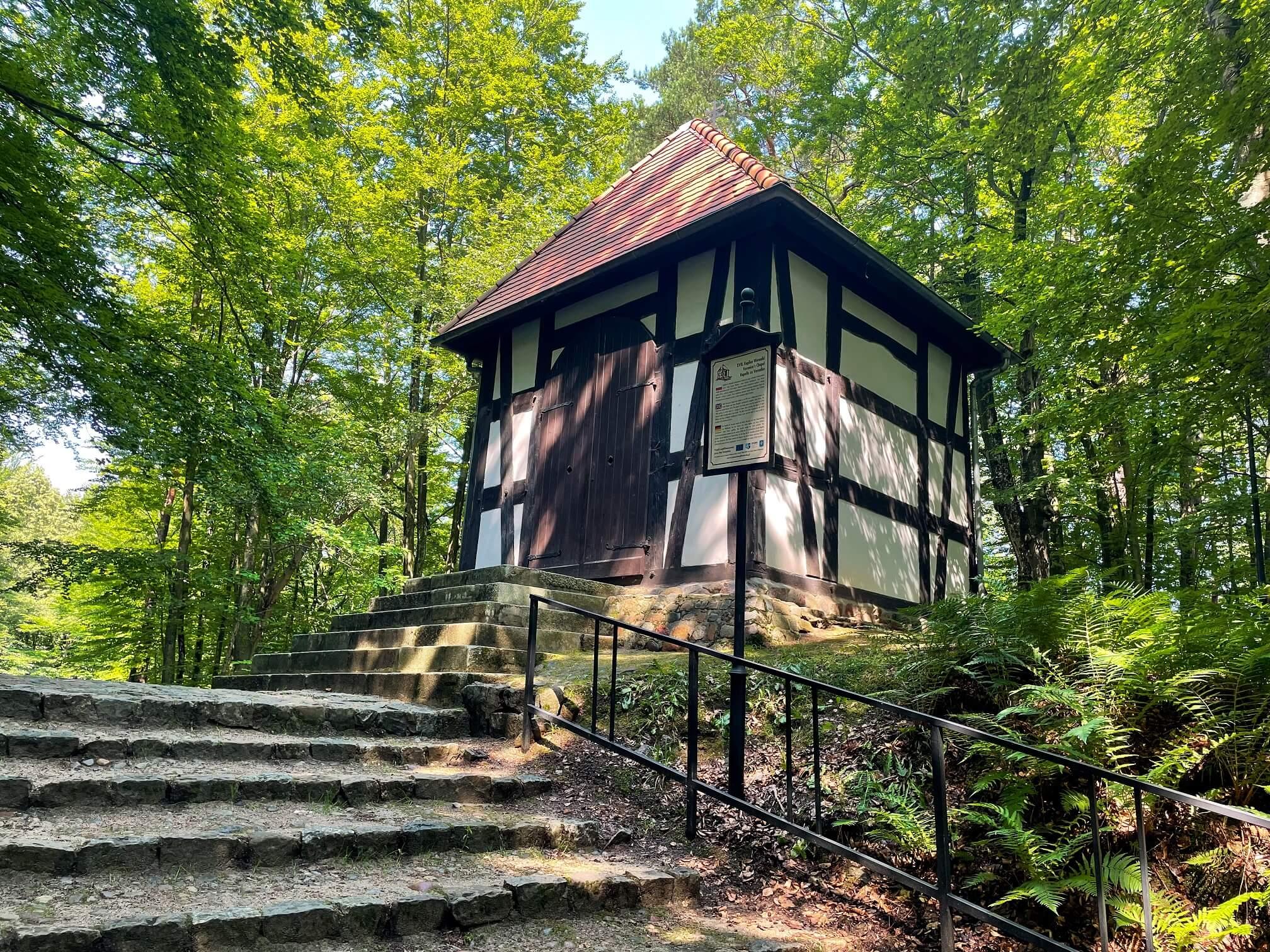 Wejherowo 17 - Wejherowo, zaczarowany las i okolice