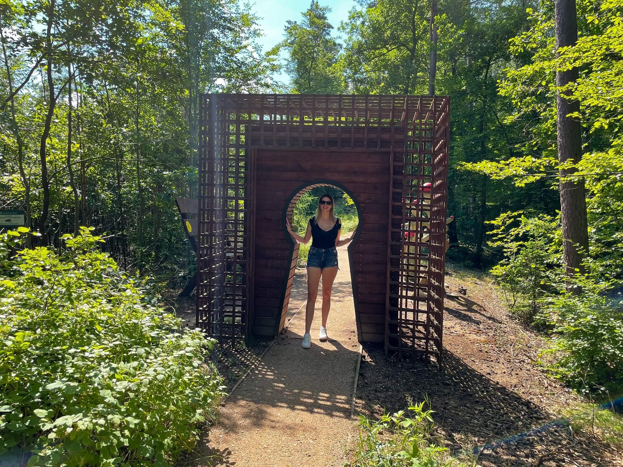 Wejherowo 21 - Wejherowo, zaczarowany las i okolice