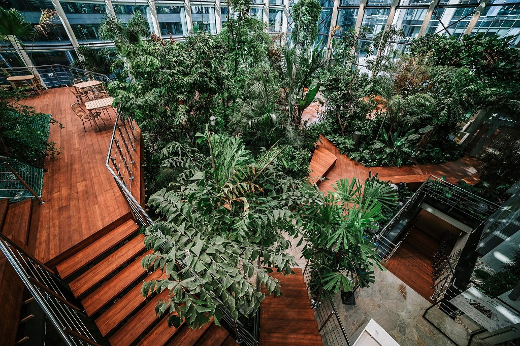 Olivia Garden 10 1 - Olivia Garden- a tropical garden in the heart of Tri-City's business