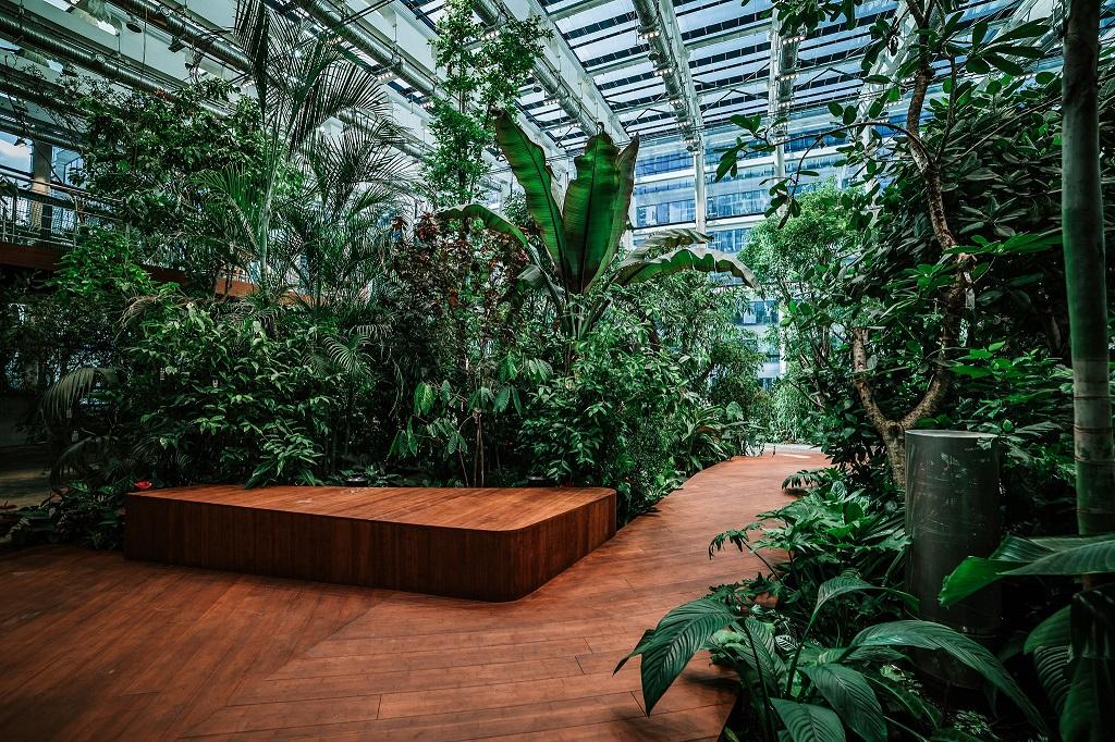 Olivia Garden 11 1 - Olivia Garden- a tropical garden in the heart of Tri-City's business