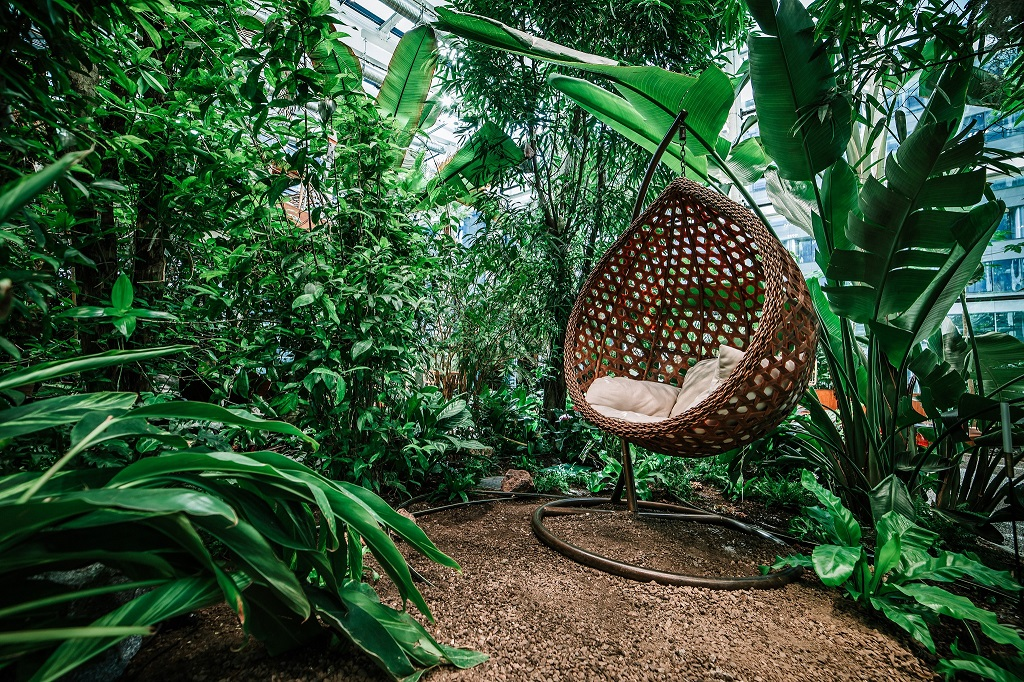 Olivia Garden 14 1 - Olivia Garden- a tropical garden in the heart of Tri-City's business