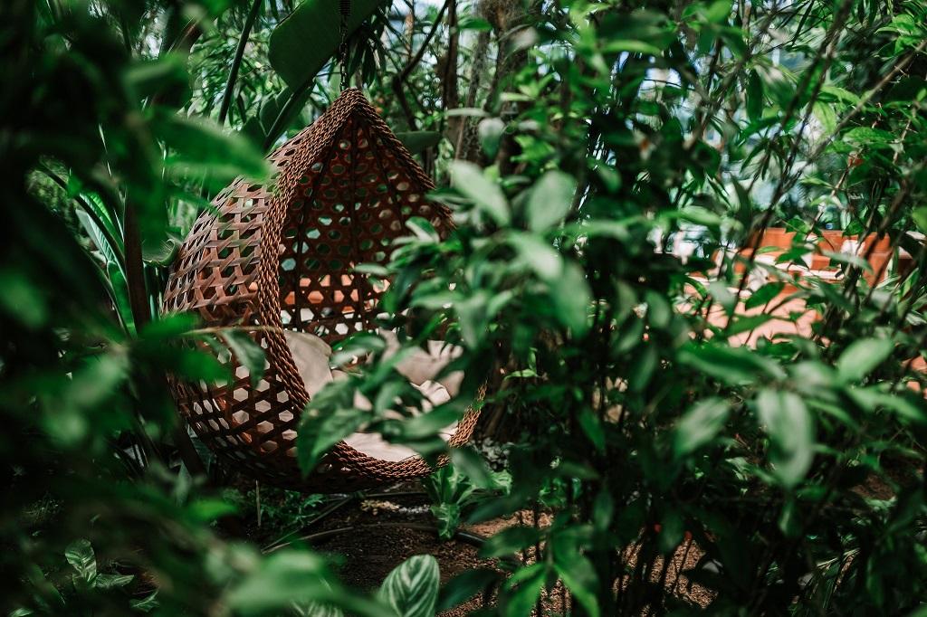 Olivia Garden 25 1 - Olivia Garden- a tropical garden in the heart of Tri-City's business