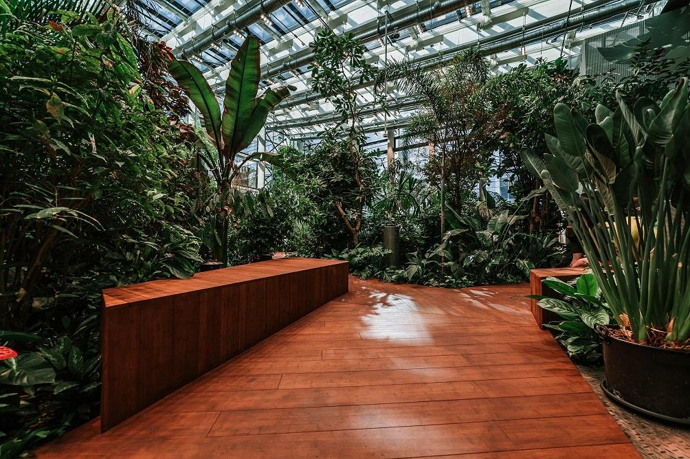 Olivia Garden 3 1 - Olivia Garden- a tropical garden in the heart of Tri-City's business